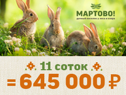 Готовый поселок «Мартово» на Новорижском шоссе 11 сот. = 645 000 рублей